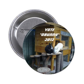Elections 2012 pinback button