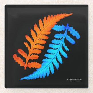 Electric Blue Fiery Orange Japanese Painted Ferns Glass Coaster
