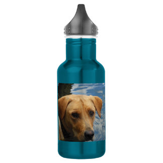 Electric Blue Wet Face Labrador Clear Skies Bottle 532 Ml Water Bottle