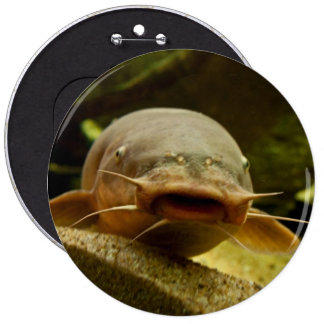 Electric catfish 6 cm round badge