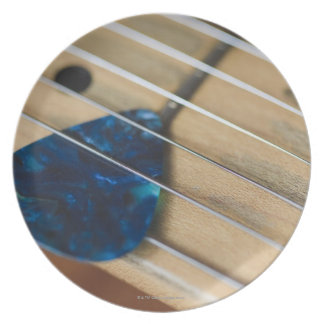 Electric Guitar Strings Plate