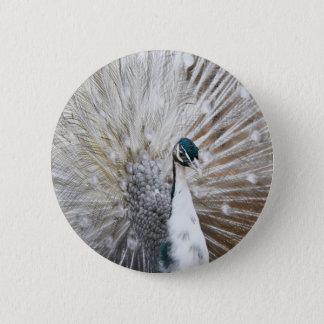 Elegant Albino Peacock 6 Cm Round Badge