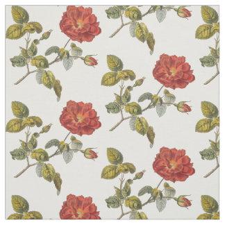 Elegant Antique French Rose