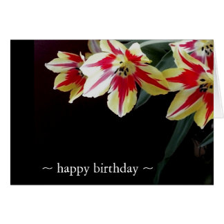 Elegant Birthday Cards- Red & Yellow Tulips Card
