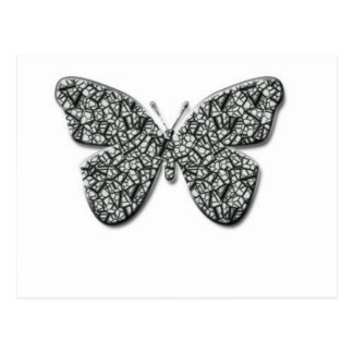 Elegant Black And White  Butterfly Postcard