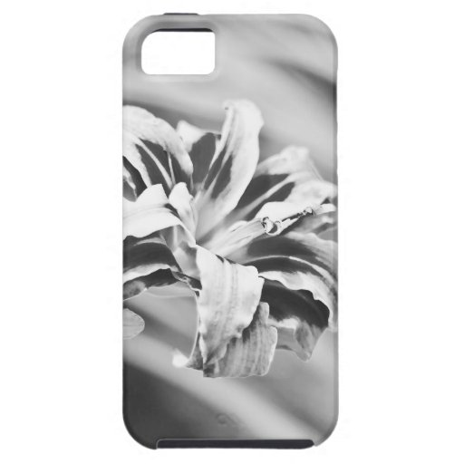 Elegant Black and White Flower Photography iPhone 5 Cases