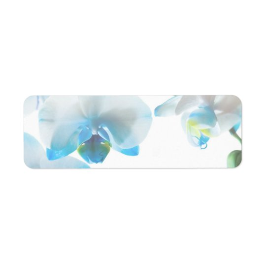 Elegant Blue Orchids Custom Labels