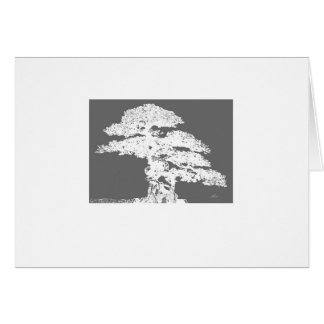 elegant Bonsai tree art blank card