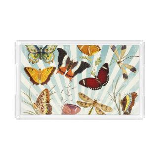 Elegant Butterfly Pattern