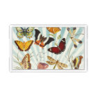Elegant Butterfly Pattern Acrylic Tray