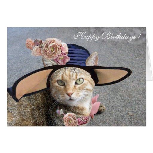 ELEGANT CAT WITH DIVA HAT,PINK ROSES Birthday Card