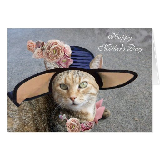 ELEGANT CAT WITH DIVA HAT,PINK ROSES Mother's Day Greeting Card