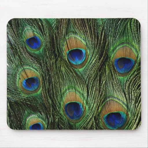 Elegant Colorful Peacock Feathers Mouse Pads