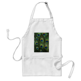 Elegant Colorful Peacock Feathers Standard Apron