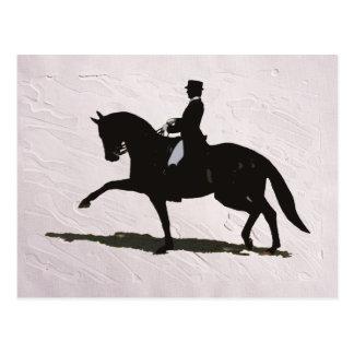 Elegant Dressage Horse & Rider Postcard
