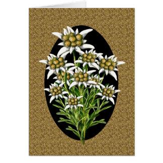 Elegant Edelweiss Flowers on Gold Custom Greeting Card