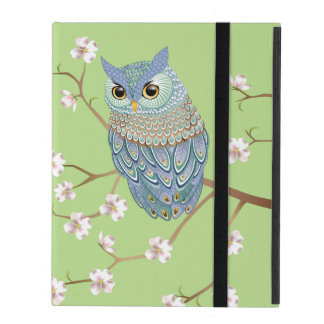 Elegant Emerald Blue Owl Powis iPad 2,3,4i Case