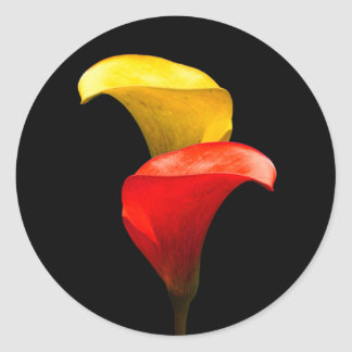Elegant Gold and Crimson Calla Lilies Classic Round Sticker