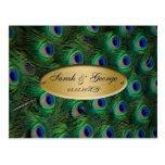 elegant gold peacock wedding RSVP Post Cards