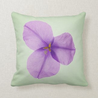 Elegant Green & Mauve Australian Native flower Cushion