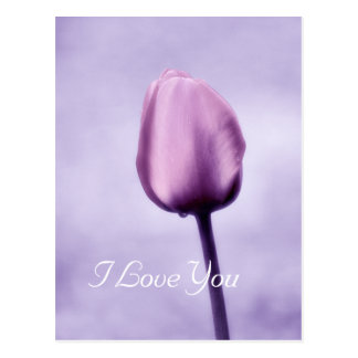 Elegant Lavender Purple Tulip I Love You Postcard
