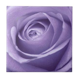 Elegant Lavender Rose Collection Small Square Tile