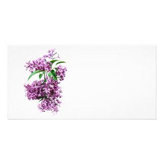 Elegant Lilacs Personalised Photo Card