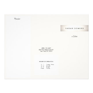 Elegant Modern FAUX Silver Striped Salon Brochure 21.5 Cm X 28 Cm Flyer