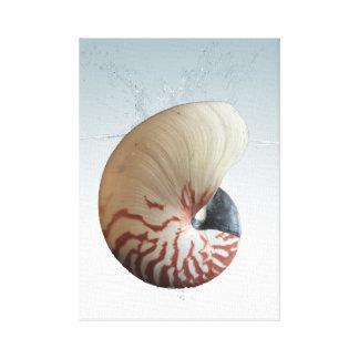 Elegant nautilus on a splash canvas print