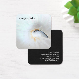 Elegant Nautilus Shell Networking Square Business Card