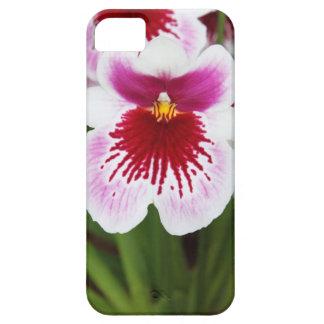 Elegant orchid iris graphic photo iPhone 5case Case For The iPhone 5