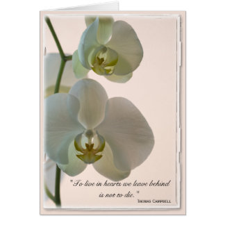 Elegant Orchid Thank You for Your Sympathy Card