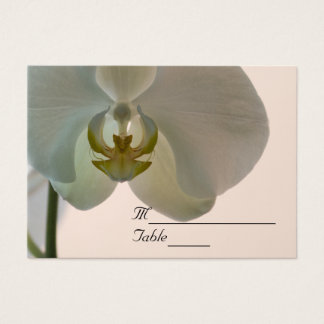 Elegant Orchid Wedding Place Card