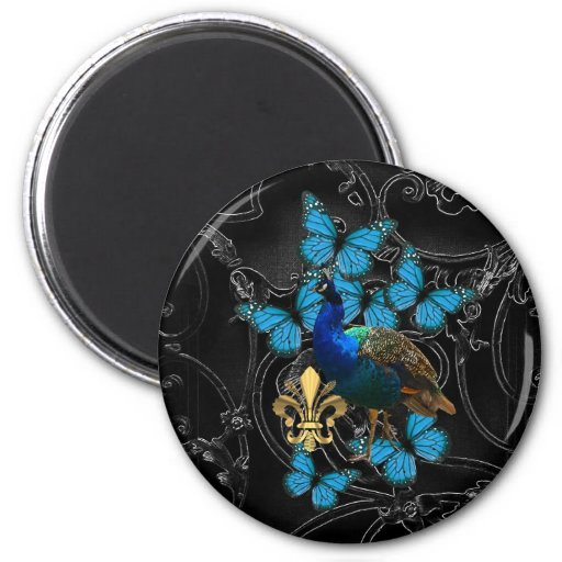 Elegant Peacock and blue butterflies on black Refrigerator Magnets