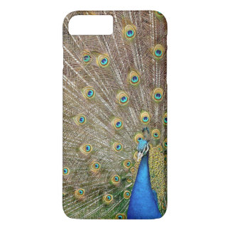 Elegant Peacock Feathers | Phone Case