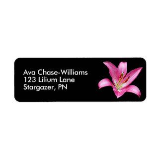Elegant Pink Oriental Lily Lilium Stargazer Flower