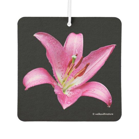 Elegant Pink Oriental Lily Lilium Stargazer Flower Car