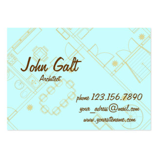 Elegant Professional Architect Pack Of Chubby Business Cards