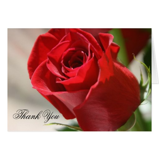 Elegant Red Rose Floral Wedding Thank You Card