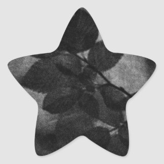 Elegant retro dark grey artistic floral photo star sticker