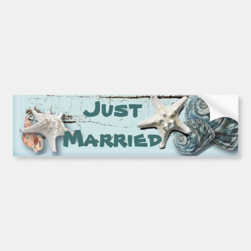 Elegant Seashells Beach Wedding Stationery Bumper Stickers