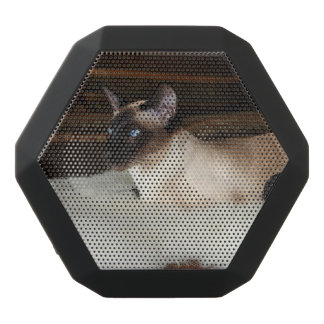 Elegant Siamese Cat Black Boombot Rex Bluetooth Speaker