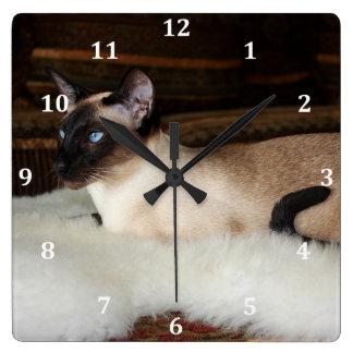 Elegant Siamese Cat Wallclocks