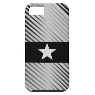 Elegant Sliver Star iPhone 5 Covers