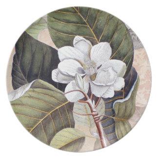 Elegant Southern White Magnolia Catesby Party Plates