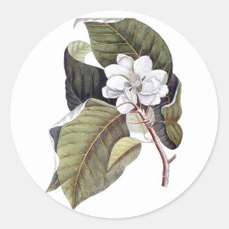 Elegant Southern White Magnolia Flower Round Sticker