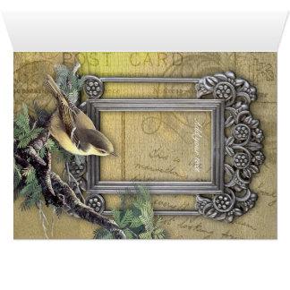 Elegant vinatge looking postcard with frame bird greeting card