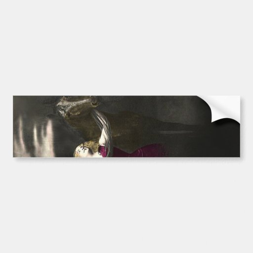 Elegant Vintage Beauty and the Black Stallion Bumper Stickers