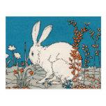 Elegant Vintage White Rabbit Postcards