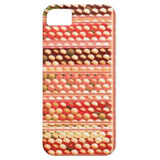 ELEGANT Warm Color EggSheels, Shells, Dots, Circle iPhone 5 Case